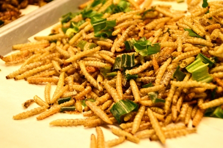 Fried bamboo larvae - national snack in Thailand Stock Photo