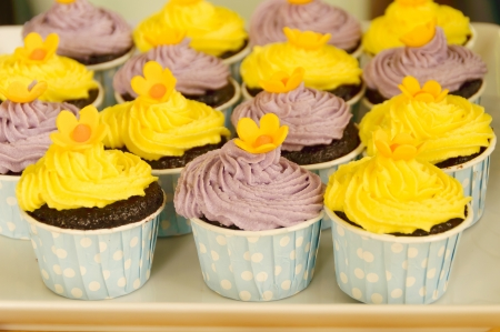 A large variety of colorful decorated cupcakes Stock Photo