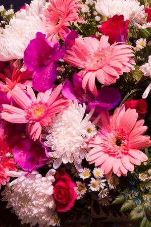 colorful bouquet from gerbera flowers isolated on white background. Closeup. Stock Photo