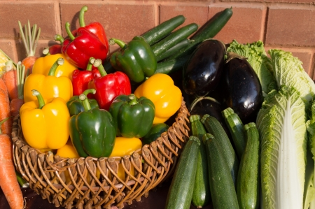 Healthy Bio Vegetables on a clay brick Background