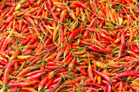 red chilli peppers patten as background Stock Photo