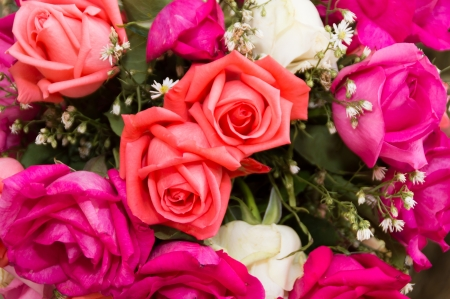 A bouquet of multicolored roses  nature background