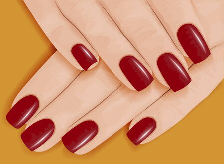 Female hands with manicure. Red nail polish. Vector illustration.