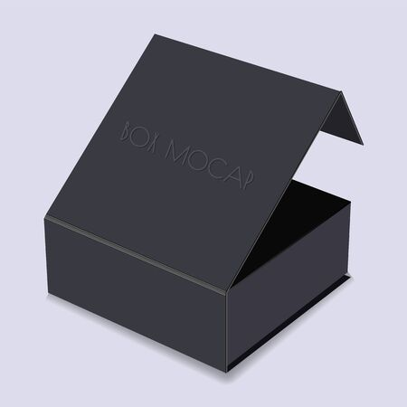 Black box with a lid. Mocap. Isolated vector object on a bright background