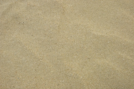 beautiful sand background photo
