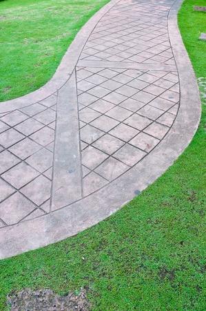 walk way in garden photo