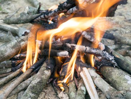 bonfire: wooden bonfire
