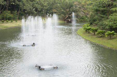 sirikit: Fountain in Queen Sirikit Park, Bangkok, Thailand