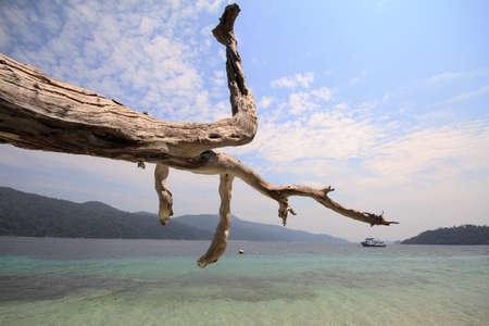 Landscape ko lipe island thailand travel Stock Photo