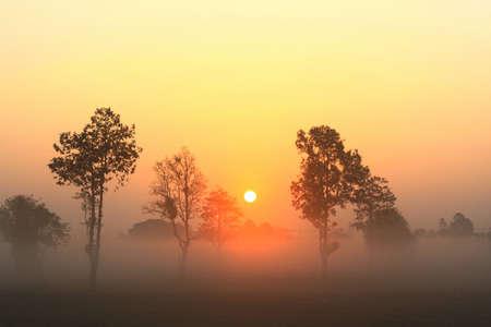 Colors of sunrise in Ubon Ratchathani city, Thailand