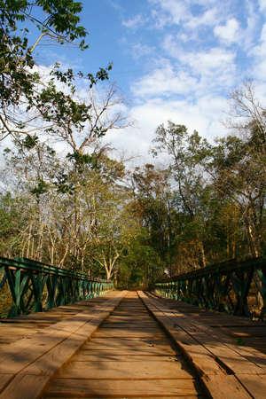 Bridge in the jungle, LAOS