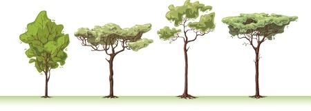 De vier grote handemade bomen.