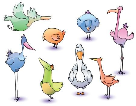 The set of the funny cartoon vector birds. Illustration