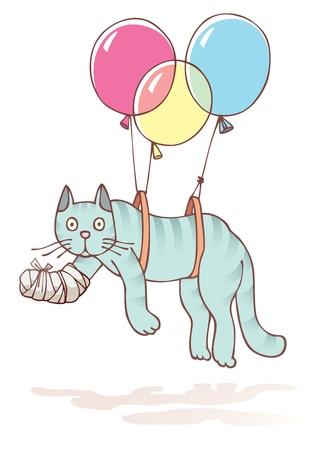obvaz: Zraněný kočku s poškozenou tlapku