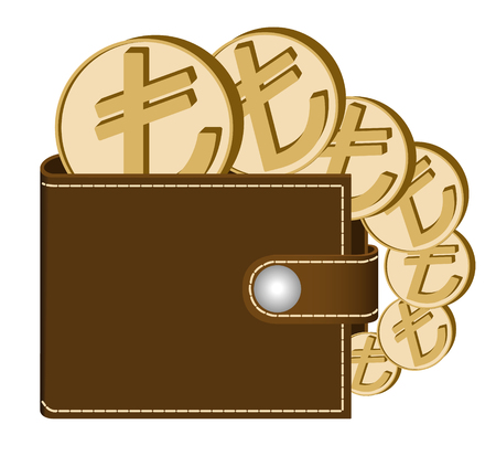 Brown wallet with Lira coins on a white background, currency in the wallet, sign and symbol currency in the form of coins, design concept color