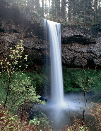 Waterfall tumbles down a cliff in Silver Falls State Park Oregon USA