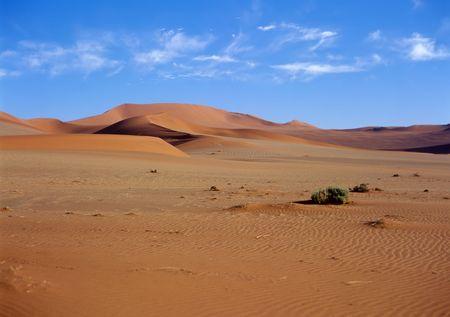 namib: Sand dunes in the Namib Desert