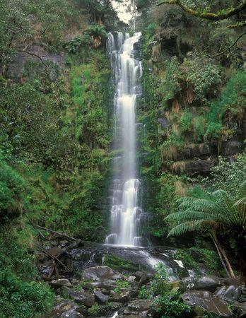 Erskine Falls The Great Ocean Road Victoria Australia
