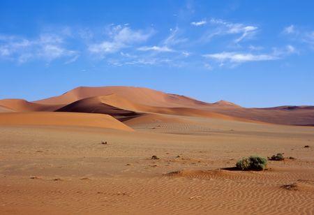 Sand dunes in the Namib Desert photo