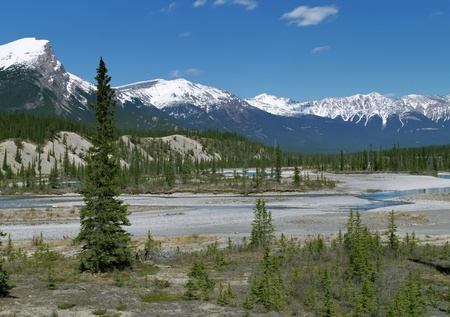 wilderness area: Panoramic view on snow peaks of Canadian Rockies Mountains in summer Stock Photo