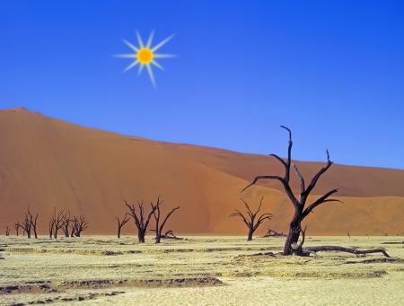 red soil: Panoramic view on Namib desert
