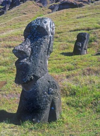 moai: Moais de Ahu Akivi Foto de archivo