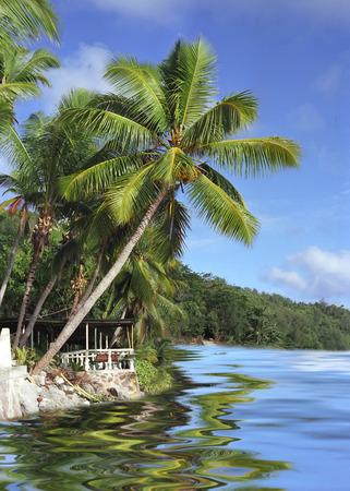 seychelles: Coastline Seychelles