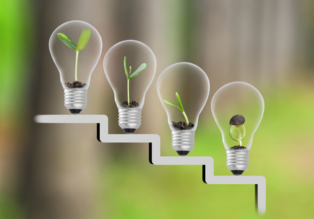 Plant in lightbulb on staircase and tree blur background , growth , development concept Stock Photo