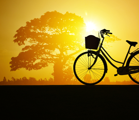 spaciousness: Bicycle silhouette  on road and sunset background