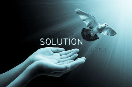 dove flying: Hand releasing a bird into the air solution concept , peace and spirituality