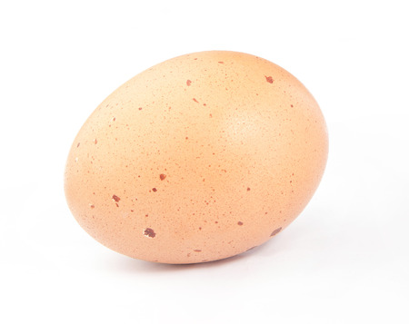 second breakfast: Brown egg on white background