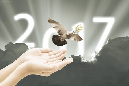 Hand releasing a bird into the air on sky 2017 background happy new year concept  retro vintage stlye
