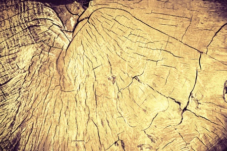 Felling in style vintage. Wooden texture in grunge background photo