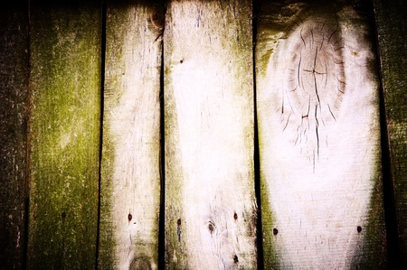 constitute: Old wooden wall constitute from mouldy boards of beige-green shades