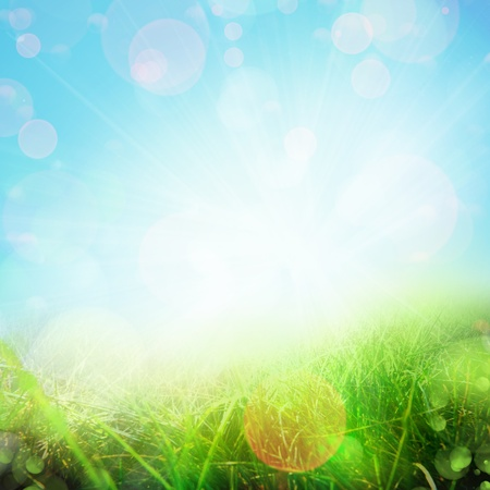 nature background: spring abstract nature background. Green grassy meadow
