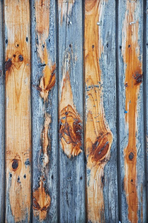 weathered wood: Wooden grunge texture