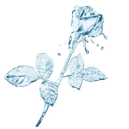 water flower splashes isolated on white Stock Photo