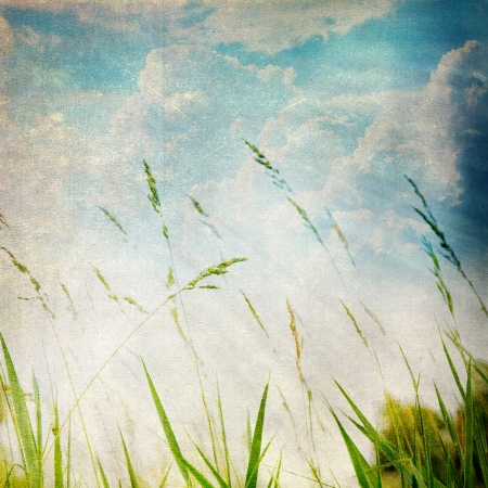 Grunge paper texture.  abstract nature background photo