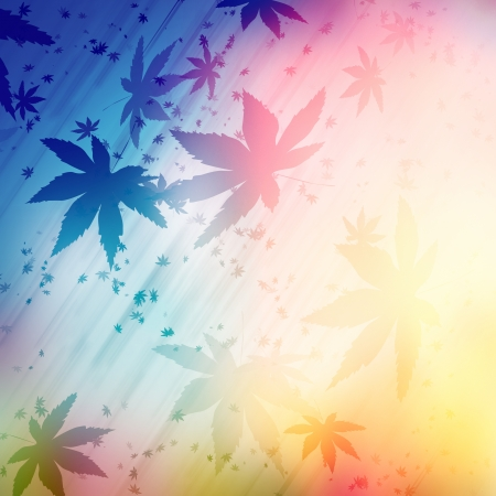 marihuana abstract background of light photo
