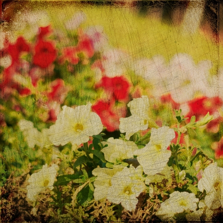 Grunge nature background, vintage paper texture Stock Photo - 15695044