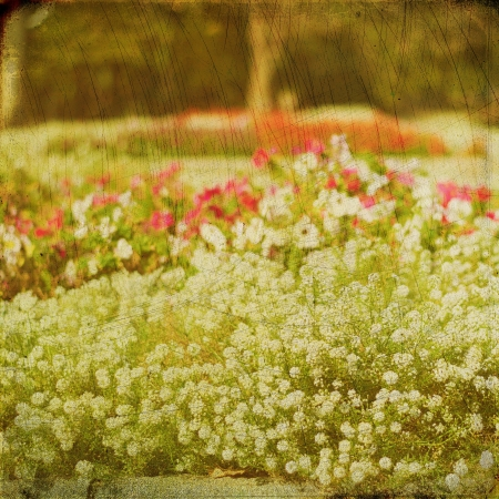 Grunge nature background, vintage paper texture photo