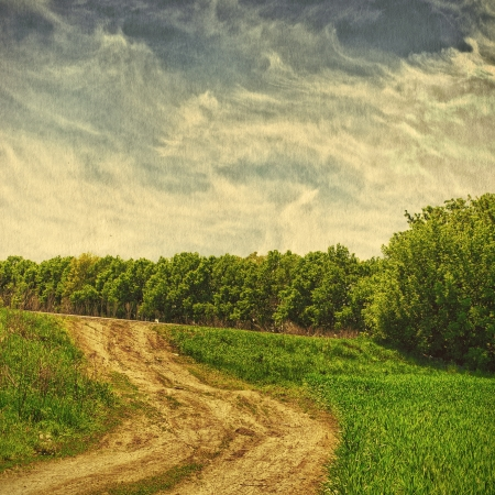 vintage field and blue sky, nature background photo