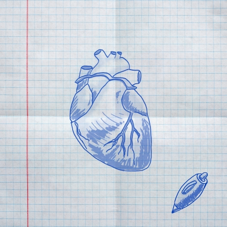 cardiac muscle: school sketches on checkered paper, heart Stock Photo