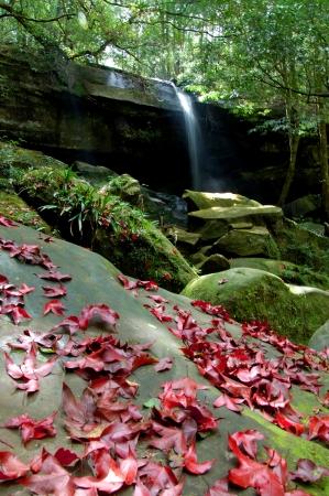 Waterfalls Nature Landscape Stock Photo - 16822606