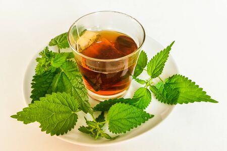 infusion of nettle