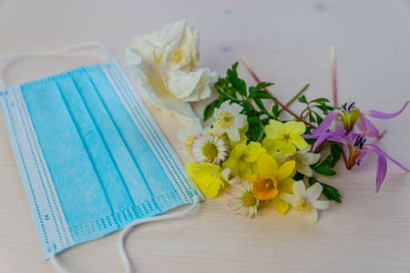 Allergy: spring flowers in bloom, used paper handkerchief, and mask, on a white surface.