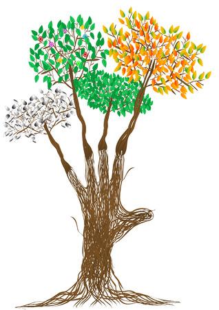 reforestaci�n: Tiempos de mano de la persona de color marr�n ramas de �rboles y una varilla de invierno primavera verano oto�o del a�o en lugar de dedos