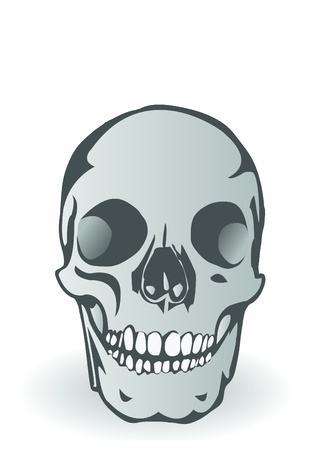 Vector illustration it is black - a white skull of the person Vector
