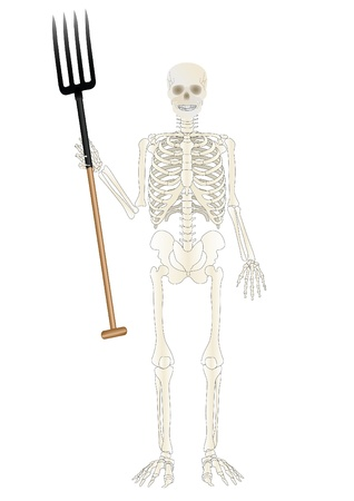 Vector a skeleton of the person with a pitchfork Stock Photo - 9020016