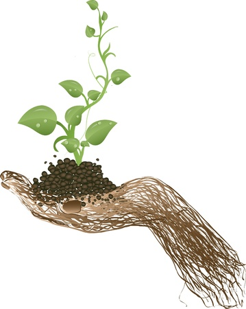 Vector illustration a green sprout on a hand from a grapevine